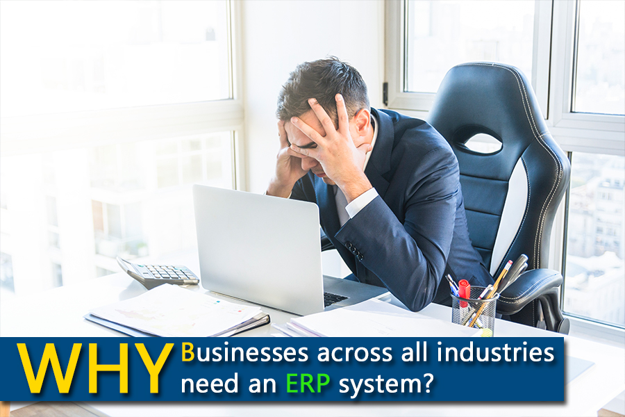 why companies need erp systems